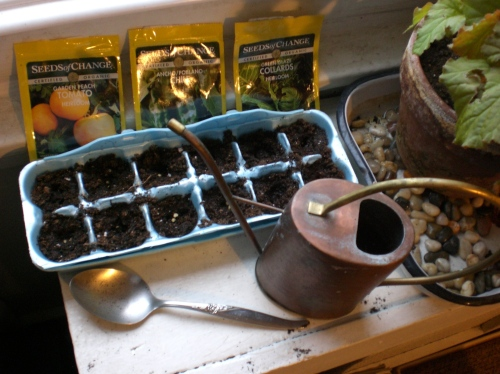 Egg carton seed tray after seeding.