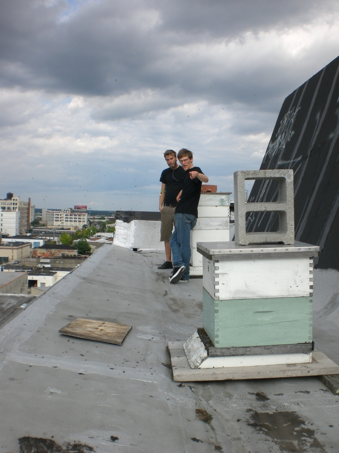 Rooftop beekeeping in Center City.